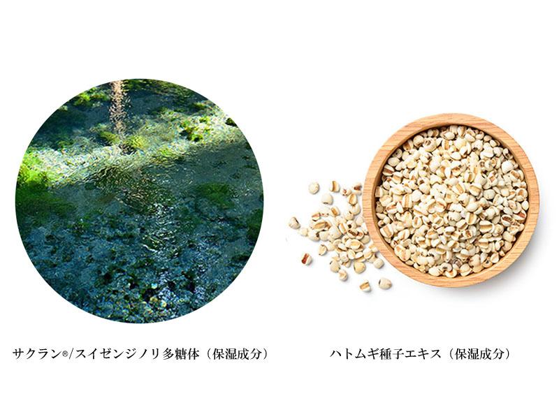 サクラン ハトムギ種子エキス配合 手肌にやさしいハンドソープ