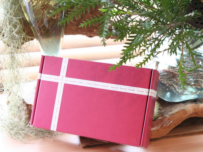 ミネコラ パーフェクト3 クリスマスコフレ プレゼント
